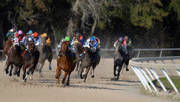 Top 10 Ultimate Horse Races in the World