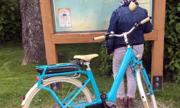 How My Fitness Was Improved By An Electric Bike