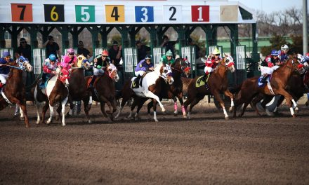 Top Thoroughbred Racetracks in Florida and Tips for your First Thoroughbred Experience