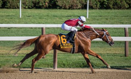 The Most Shocking Horse Racing Results
