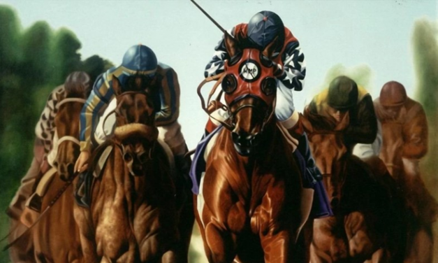 4 Main Categories of Horse Racing – A Quick Guide to Bettors
