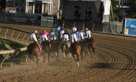 Planning for Horse Race Bets: Rules that you have to Follow