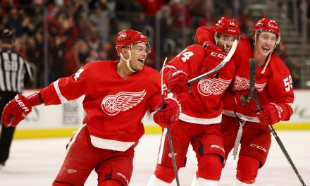 Red Wings Strategy in the Offseason