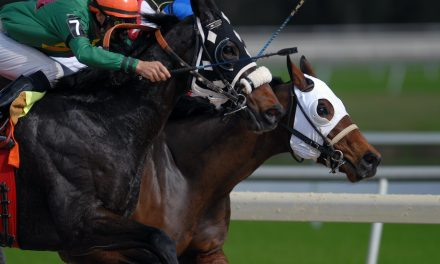 Four Intriguing Long Shots Who Could Challenge for the Kentucky Derby